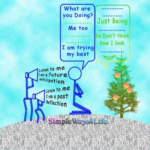 watch a tree